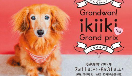 第11回イキイキ犬賞 募集開始