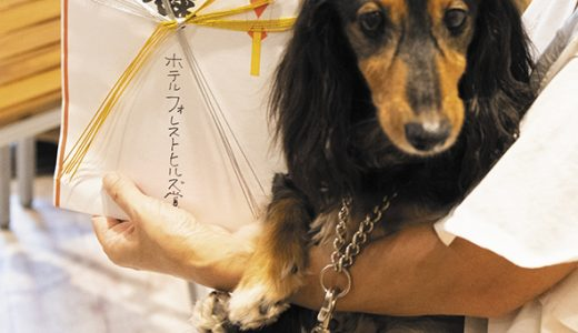 イキイキ犬賞表彰式 事前申し込み