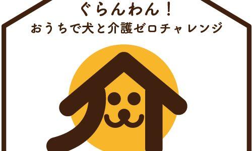 おうちで犬と介護ゼロチャレンジ!第5弾アップ