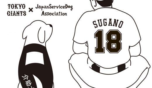 6/19プロ野球開幕に向けて!登板予定の菅野投手×介助犬コラボグッズ販売開始キャンペーン