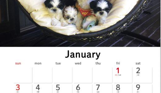 2021年のオリジナルカレンダーを作ろう!