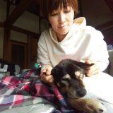 【密着!訪問介護】黒柴・タロウくん16歳と家族の奮闘記③