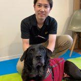 犬の理学療法士って?